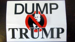 A 'Dump Trump' placard from the 2016 US presidential election.
